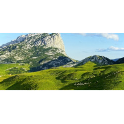 Retour Montenegro