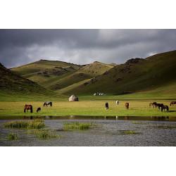 Retour Kirghizie