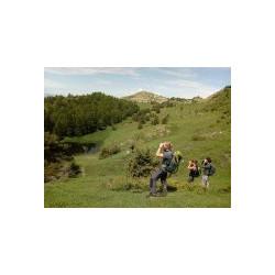 Formation Naturaliste été Alpes FR PARTICULIERS